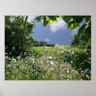 Kansas Meadows and Wildflowers Poster