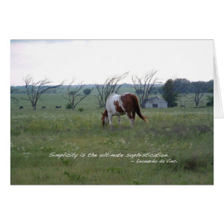 Kansas Paint Horse Card