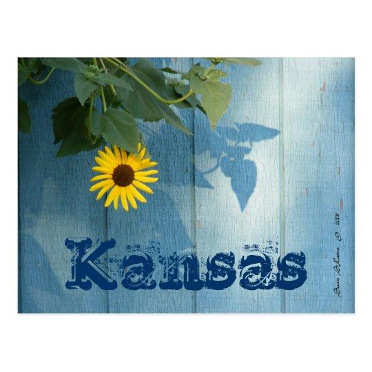 Kansas Postcard: Sunflower Blue Postcard