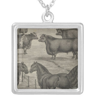 Kansas Representatives Silver Plated Necklace