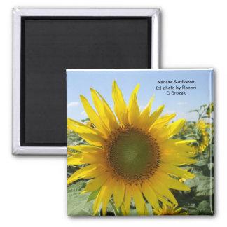 Kansas Sunflower Magnet