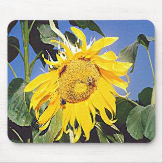 Kansas Sunflower Mouse Pad