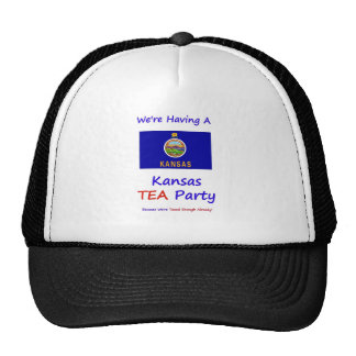 Kansas TEA Party - We re Taxed Enough Already Hat