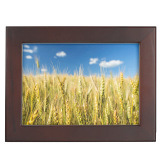 Kansas Wheat Keepsake Box