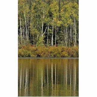Kanuti River Reflection Photo Cut Outs
