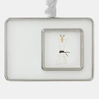 Karate Chopstick Full Framed Ornament