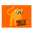 Karate KAT (cat) takes no prisoners Postcard