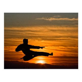 karate kick at sunrise postcard