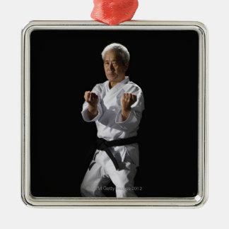 Karate master, portrait, studio shot 2 ornament