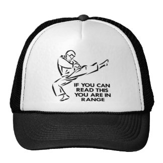 Karate, MMA, You ARE In Range Cap