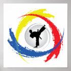 Karate Tricolor Emblem Poster