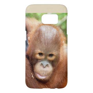 Karbank Orangutan Borneo Animals