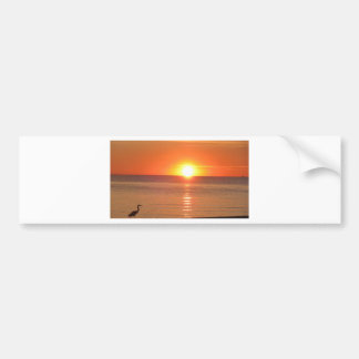 KarenTheBlueHeron 015 JPG Bumper Sticker
