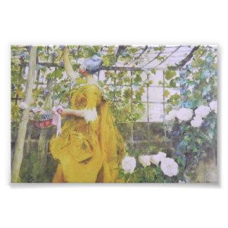 Karin Larsson in the Grape Arbor Photo Print