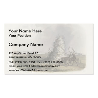 Karl Bodmer-Elkhorn Pyramid on the Upper Missouri Business Card Template