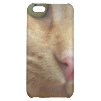 Kat Koi Cover For iPhone 5C