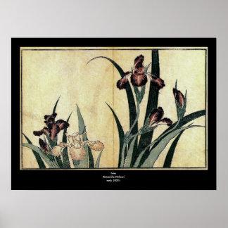 Katsushika Hokusai s Irises Posters
