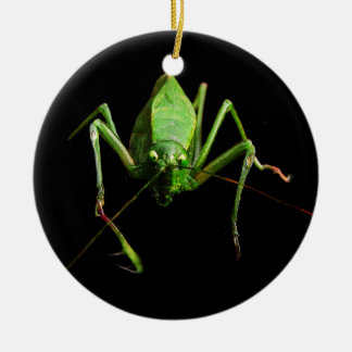 Katydid Christmas Ornament