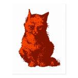 Katze cat postkarten