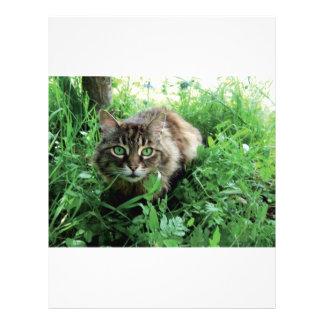 Katze Flyer Design