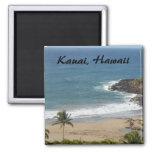 Kauai, Hawaii Fridge Magnets