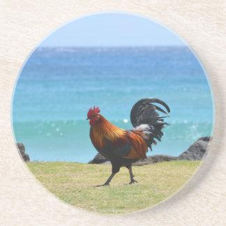 Kauai rooster coaster