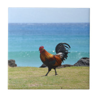 Kauai rooster tile
