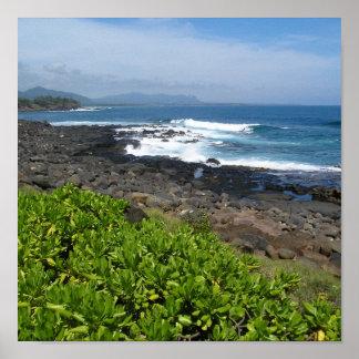 Kauai succulents 2 poster