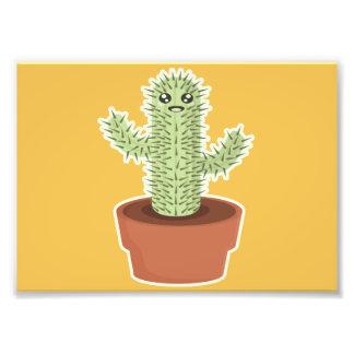 Kawaii Cactus Photo