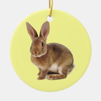 Kawaii Cute Bunny Rabbit Round Ceramic Decoration