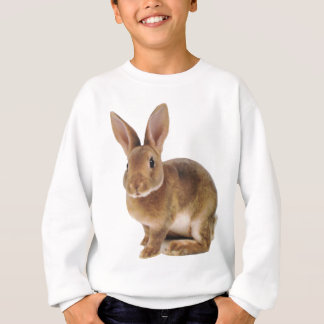 Kawaii Cute Bunny Rabbit Sweatshirt