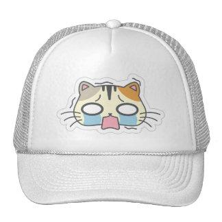 Kawaii Cute Crying Little Kitty Kitten Cat. Cap