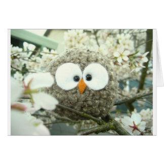 Kawaii Oliver the Owl Cards