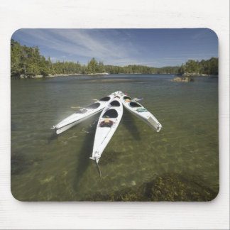 Kayak Fleet at Rest During Late Afternoon at Mouse Mat