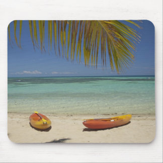 Kayaks on the beach, Plantation Island Resort 2 Mouse Pad