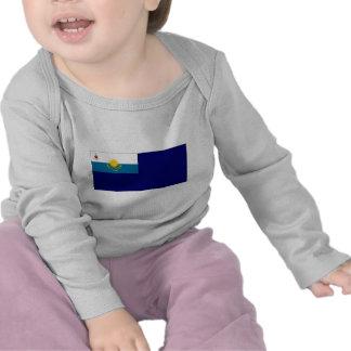Kazakhstan Government Ensign Shirt