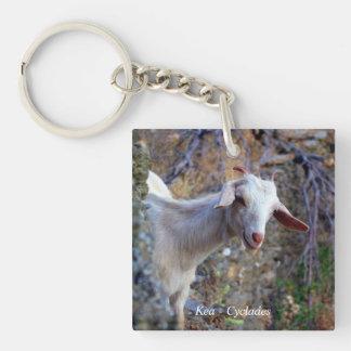 Kea – Cyclades Acrylic Key Chain