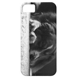 Keek iPhone 5 Cover
