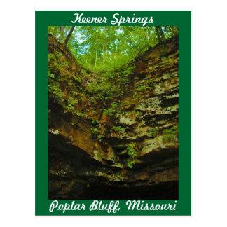 Keener Springs Poplar Bluff Missouri Postcard