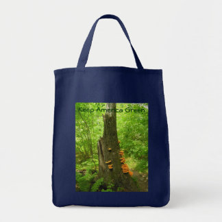 Keep America Beautiful. Tote Bag
