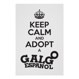 Keep Calm and Adopt a Galgo Poster