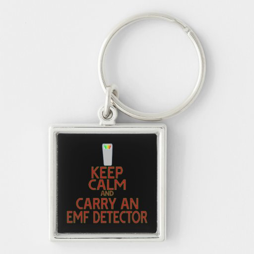 Keep Calm and Carry an EMF Detector (Parody) Key Chains