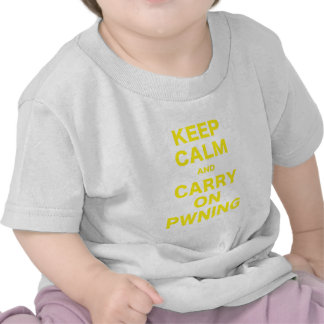 Keep Calm and Carry On Pwning T Shirt