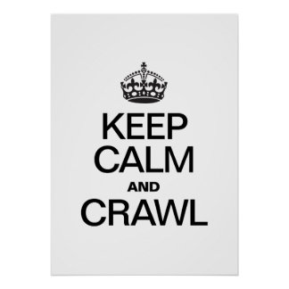 KEEP CALM AND CRAWL POSTER