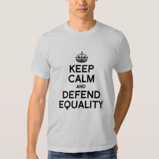 KEEP CALM AND DEFEND EQUALITY T SHIRTS