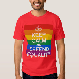 KEEP CALM AND DEFEND EQUALITY TSHIRT