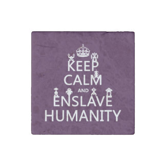Keep Calm and Enslave Humanity (robots) Stone Magnet