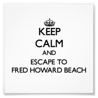 Keep calm and escape to Fred Howard Beach Florida Photo