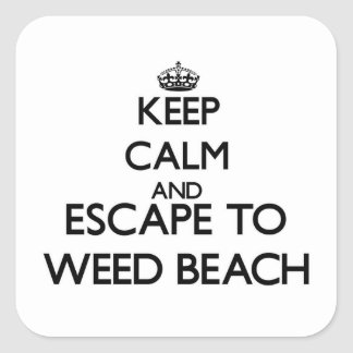 Keep calm and escape to Weed Beach Connecticut Square Sticker