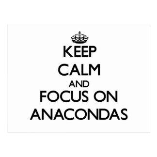 Keep calm and focus on Anacondas Post Cards